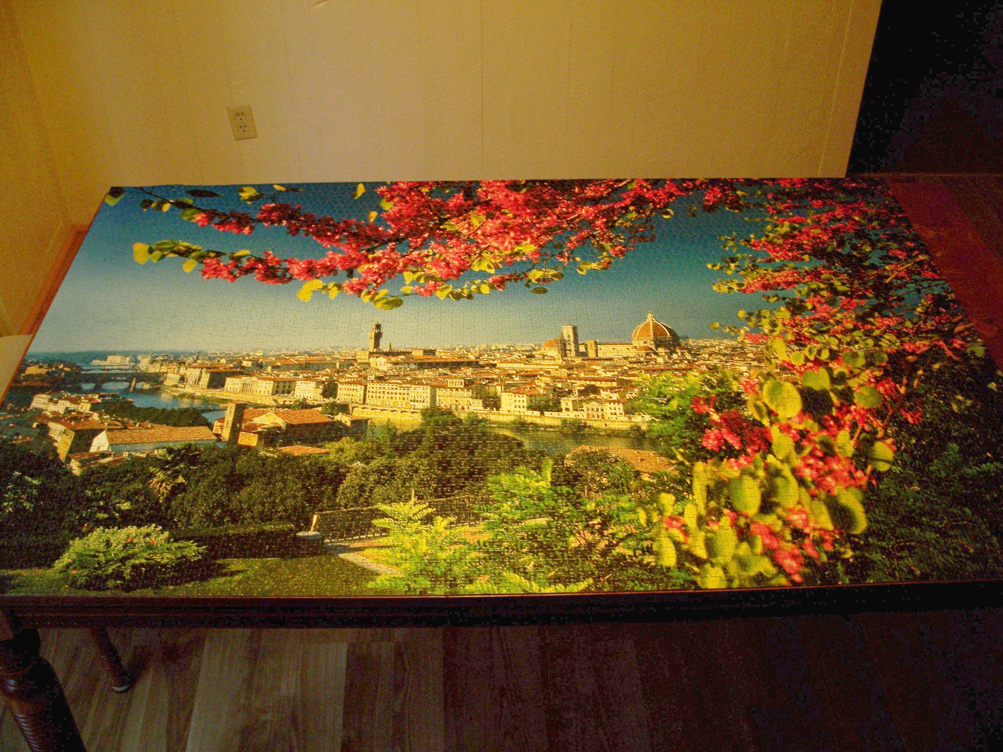 5000 piece puzzle of florence stacy 39 s books for Custom 5000 piece puzzle